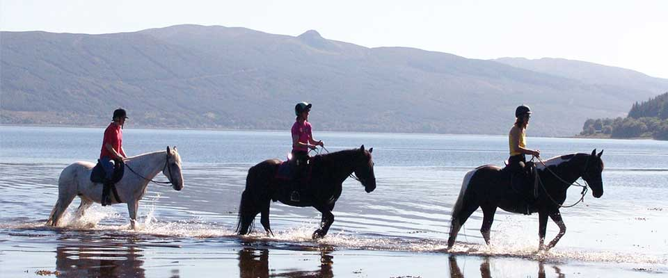 Argyll Adventure horse riding